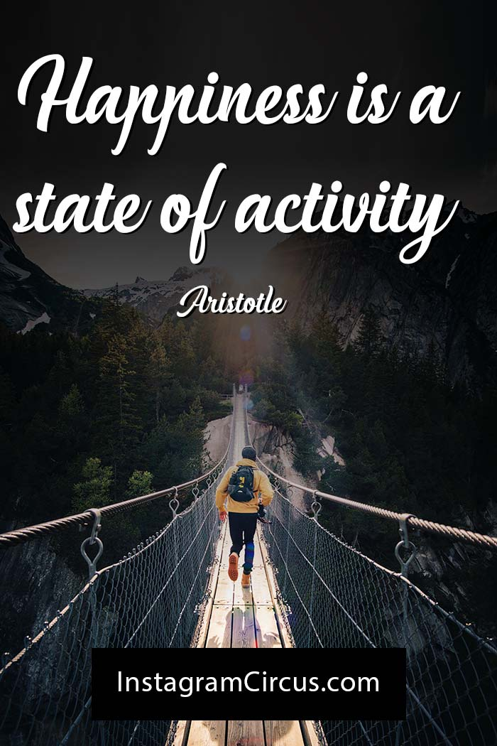 Happiness is a state of activity. — Aristotle
