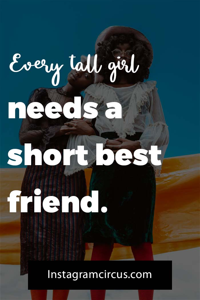 Awesome funny friendship quotes