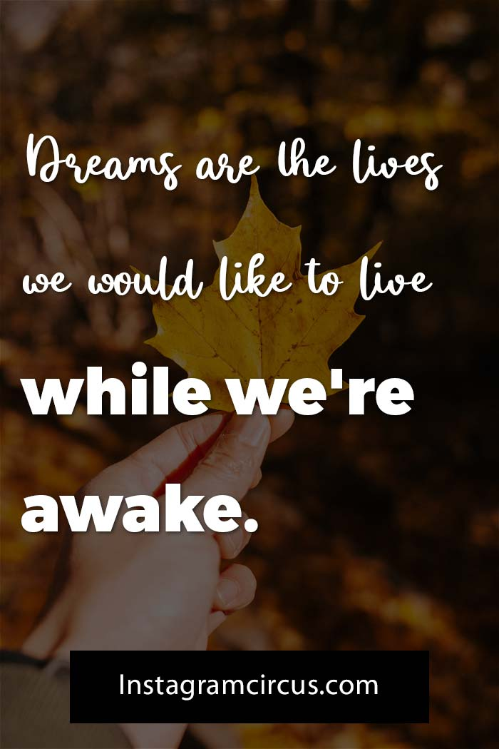Quotes about dreams and reality